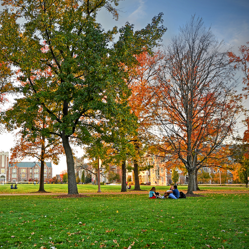 Students studying on Danforth campus during the fall season.
