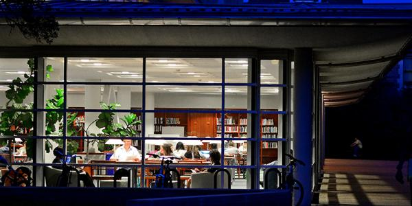 Adult students studying in Olin Library on Washington Unviersity's Danforth campus